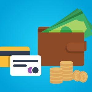 payment money wallet